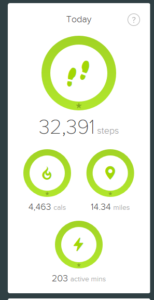 Today's Steps